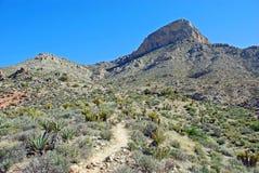 Pico de Turtlehead na garganta vermelha da rocha, Las Vegas, Nevada Fotografia de Stock