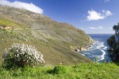 Pico del buhonero Fotografía de archivo libre de regalías