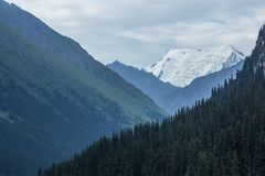 Pico del hielo de Palatka en Kirguistán Imagen de archivo