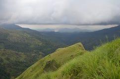Pico del ` s de Mini Adam Fotografía de archivo libre de regalías