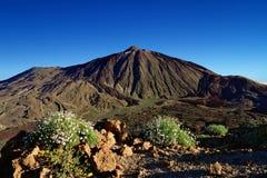 Pico del Teide, il più alto picco della Spagna, Tenerife Fotografia Stock