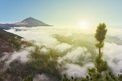 Pico del teide, mountain above the clouds, Tenerife, Spain Royalty Free Stock Images