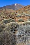 Pico del Teide Royalty Free Stock Image
