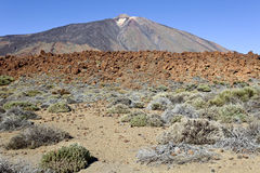Pico del Teide. Parque Nacional del Teide, Tenerife, Canary Islands, Spain Royalty Free Stock Photos