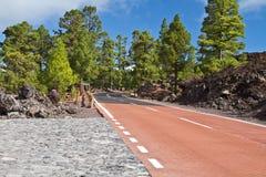 Pico del Teide, Ténérife, la plus haute montagne de l'Espagne Ténérife, îles Canaries Image libre de droits