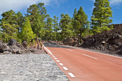 Pico del Teide, Tenerife, hoogste berg van Spanje Tenerife, Canarische Eilanden royalty-vrije stock afbeelding