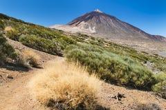 Pico del Teide in Tenerife, Spain Royalty Free Stock Photo