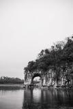 Pico del tronco del elefante Imágenes de archivo libres de regalías