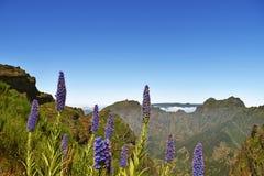 Pico Do Arieiro αιχμή Βουνά της Μαδέρας Στοκ εικόνες με δικαίωμα ελεύθερης χρήσης