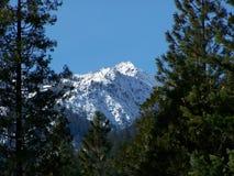 Pico dos alpes da trindade Imagem de Stock