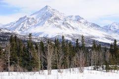 Pico en el rango de Alaska Imagenes de archivo