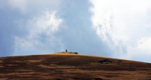 pico en las montañas de Cindrel, Rumania Fotografía de archivo