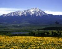 Pico español del oeste Imágenes de archivo libres de regalías