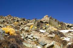 Pico grande de Almaty Fotos de Stock