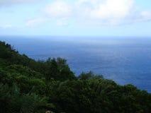 Pico_island_Azores Royaltyfria Bilder
