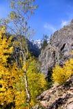 Pico magnífico de Teton Foto de archivo libre de regalías