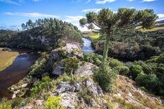 Desnível de rios. Located in the south of Brazil Royalty Free Stock Photos