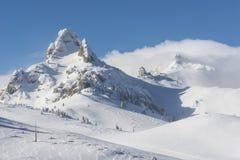 Pico nevado Imagens de Stock