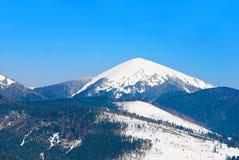 Pico nevado da montagem Hoverla, a montanha a mais alta de Ucrânia, Carpathia Fotografia de Stock