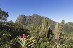 Pico Parana-berg dichtbij Curitiba - Serra do Ibitiraquire stock afbeeldingen
