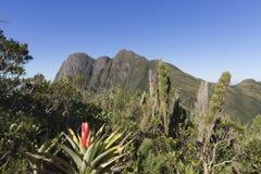 Pico Parana mountain near Curitiba - Serra do Ibitiraquire. Pico Parana the highest mountain in southern Brazil stock images