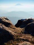 Pico rochoso acima do tempo frio nas montanhas, névoa colorida do inverno inverso da névoa Vale enevoado Imagens de Stock Royalty Free