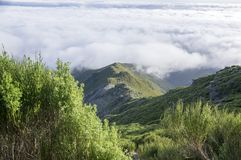 Pico Ruivo hiking, above clouds, amazing magic landscape, incredible views, sunny weather with low clouds, island Madeira, Portu. Gal royalty free stock images
