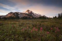 Pico Snowcapped no verão Fotografia de Stock
