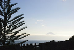Pico with tree silhouette Royalty Free Stock Photography