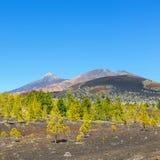 Pico Viejo and El Teide, El Teide National Park, Tenerife Royalty Free Stock Photos