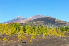 Pico Viejo och El Teide, nationalpark för El Teide, Tenerife Arkivfoton