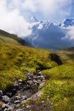 Picos alpinos y corrientes alpinas Imagen de archivo