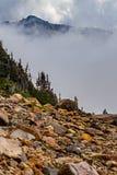 picos altos atrás das árvores da névoa e de uma vigia áspera fotos de stock royalty free
