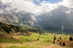 Picos, corrientes y prados de montaña en Grindelwald, Suiza Foto de archivo libre de regalías