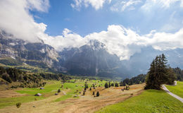 Picos, corrientes y prados de montaña en Grindelwald, Suiza Imagen de archivo