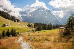 Picos, corrientes y prados de montaña en Grindelwald, Suiza Fotos de archivo