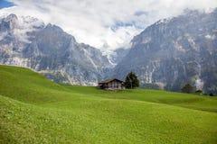 Picos, corrientes y prados de montaña en Grindelwald, Suiza Fotos de archivo libres de regalías