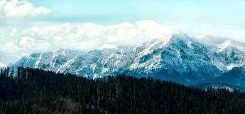 Picos cubiertos en nieve debajo del cielo nublado detrás de un bosque Imagen de archivo libre de regalías