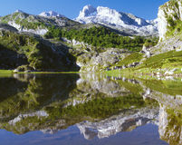 Picos da Europa Royalty Free Stock Photography