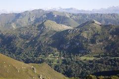 Picos de从女低音del Torno的Europa Mountains;Austurias 免版税库存照片