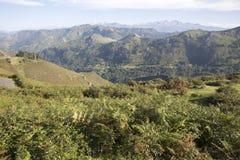 Picos de从女低音del Torno, Austurias的Europa Mountain 免版税库存图片
