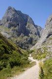 在Picos de Europa山的小径,北西班牙 免版税库存图片