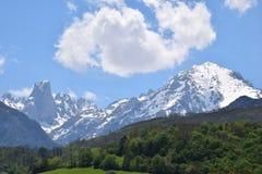 Picos de Europa Imagen de archivo libre de regalías