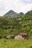 Picos de Europa, Asturias Royalty Free Stock Images