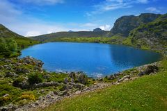 Picos de Europa Enol sjö i Asturias Spanien arkivbild