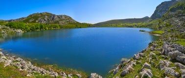 Picos de Europa Enol sjö i Asturias Spanien royaltyfria bilder