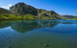 Picos de Europa Enol sjö i Asturias Spanien royaltyfri fotografi