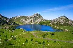 Picos de Europa Enol sjö i Asturias Spanien fotografering för bildbyråer