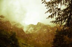 Picos de Europa Royalty Free Stock Image