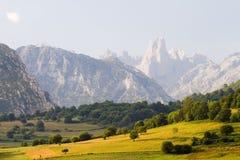 Picos de Europa, Spanien Lizenzfreies Stockbild
